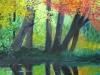 creek-reflections-small