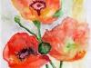 poppies-1333x1646-1333x1646