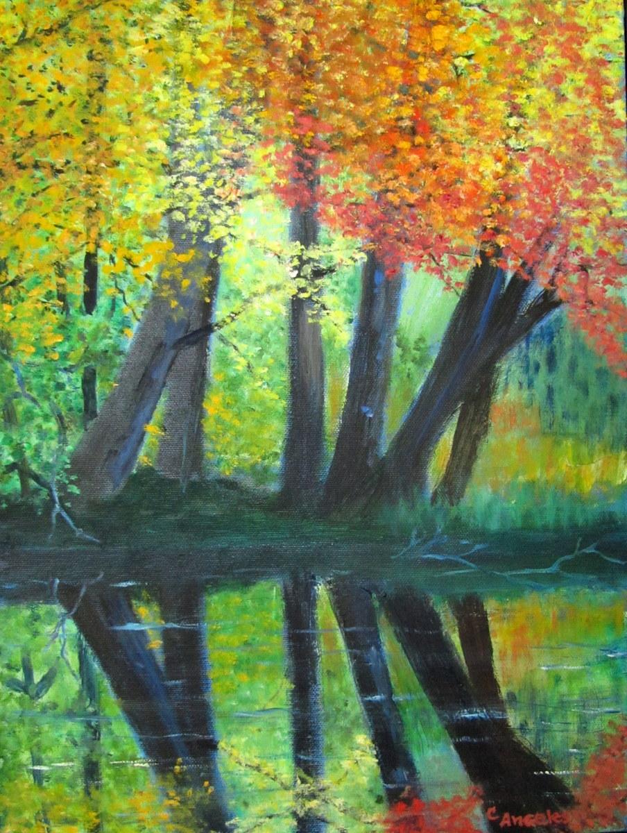 Creek Reflections