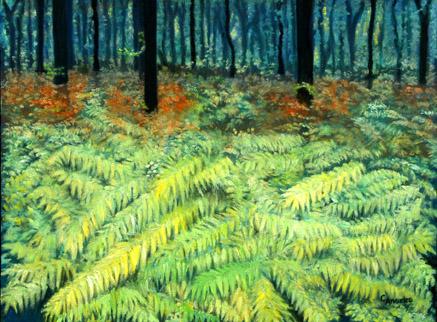 The Fern Glade